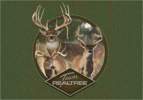 Team Realtree 9 Realtree Collection Area Rug