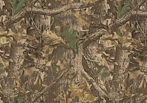 Timber Realtree Collection Area Rug